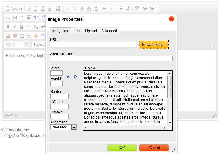 Cara Konfigurasi/Memasang CKEditor dan KCFinder di CodeIgniter